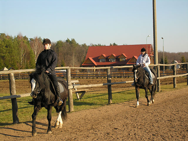 naukę jazdy na koniu