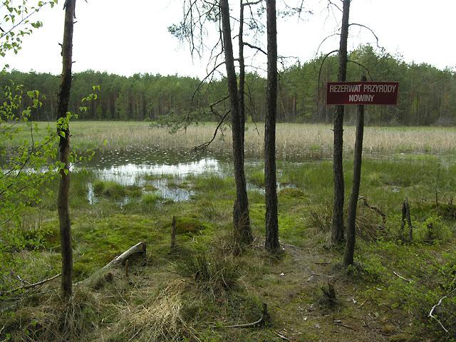 Rezerwat Nowiny