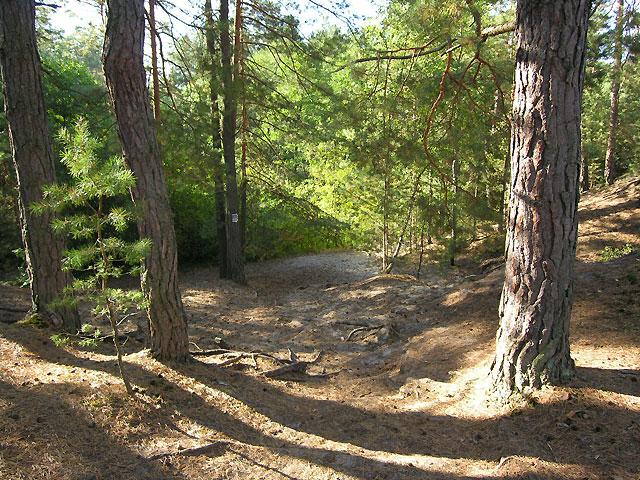 zejście szlaku do rzeki Jeleń