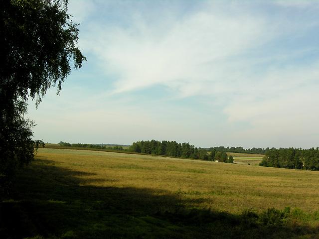 to jest widok po lewej, a idziemy prosto przez pole