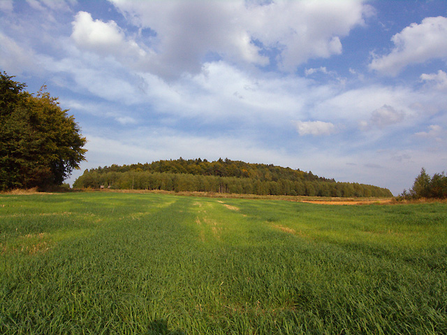 jeszcze raz monumentalne wzgórze Wapielni