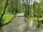 Rzeka Tanew